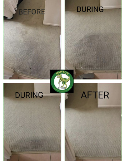BeforeAfterCarpetsRaporCleaningIpswich